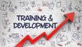 Training And Development Drawn On White Brickwall. 3D.
