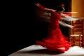 Training of a flamenco dancer Royalty Free Stock Photo