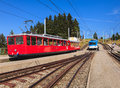 Trains on Mt. Rigi in Switzerland Royalty Free Stock Photo