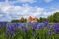Trakai island Castle Royalty Free Stock Photo