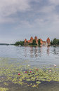 Trakai red brick castle with a water lilies in front lake galve Royalty Free Stock Image