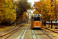 Trams in Europe Royalty Free Stock Image