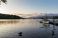 Tranquil dusk scene of mute swans and ducks swimming in Lake Windermere Royalty Free Stock Photo