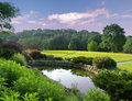 Tranquil park beautiful with pond and lush foliage Stock Photo