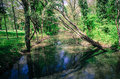 Tranquil river canal with trees around Royalty Free Stock Image