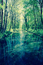 Tranquil river canal with trees around Stock Photo