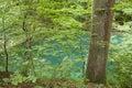Tranquil river danube scene in germany,europe. Royalty Free Stock Photo