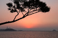 Tranquility after sunset right the in south korea Royalty Free Stock Photos