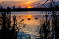 Tranquillity sunset on the beautifull day Royalty Free Stock Photography