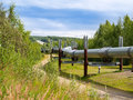 Trans Alaska Pipeline snakes through Alaskan landscape. Royalty Free Stock Photo
