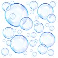 Transparent blue soap bubbles Royalty Free Stock Photo