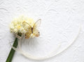 Transparent butterfly on narcissus bouquet Stock Images