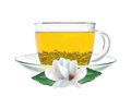 Transparent cup of green tea and jasmine flowers isolated