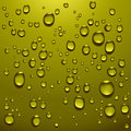 Transparent water drops Stock Image
