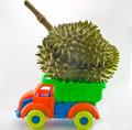 Transport durian toy pickup with fruit transporter concept Royalty Free Stock Image