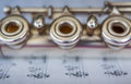 Transversal Flute Detail Royalty Free Stock Photo
