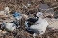 Trash background a landscape on scrap heap Stock Photography