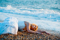 Trash the wedding dress Stock Photo