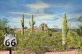 Trasy scenerii bajecznie kaktusowych czerwonych skał zmierzchu arizona piękna pustynia Obraz Stock