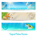 Travel and vacation banners with tropical natures Royalty Free Stock Photos