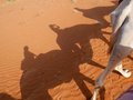 Traveler and camel shadows on orange wahiba sand desert, Oman Royalty Free Stock Photo
