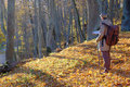 Traveler exploring the map young man in autumn forest Royalty Free Stock Photography