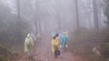Traveler on phukradung trail in fog season and rains Stock Photography
