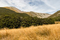 Travers range in nelson lakes national park new zealand Stock Images