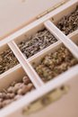 Tray with assorted dried spices and herbs overhead view of a individual divisions displaying for use in a kitchen to season Royalty Free Stock Photos