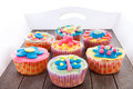 Tray with colorful decorated cupcakes Stock Images