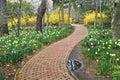 Trayectoria del jardín Imagen de archivo