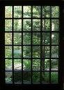 Trädgårds- japaneese Royaltyfria Bilder