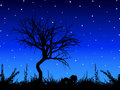 Tree against starry sky Stock Photos