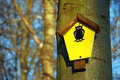 On a tree attached yellow sign which means natural monument area Royalty Free Stock Photo