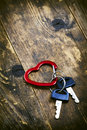 The tree in the background and heart symbol and two key locked keys shaped carabiner Royalty Free Stock Images