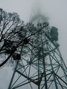 Tree on the background of a high metal tower in the fog
