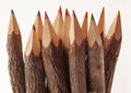 Tree bark pencils close up of made from branches Stock Photo