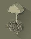Árbol cerebro raíz