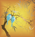 Tree Branch and Birds Royalty Free Stock Photography