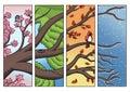 Tree Branch Passing Through the Four Seasons