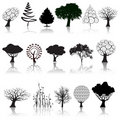 Tree collection Stock Image
