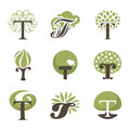 Tree. Design elements. Vector logo templates set Royalty Free Stock Photo