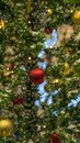 The tree is covered with snow, the tree is decorated with toys Royalty Free Stock Photo