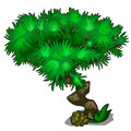 Tree with curved trunk and lush crown of leaves
