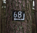 Tree direction signpost number for hikers on the trail Royalty Free Stock Images