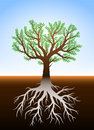 Tree in earth and it s roots illustration with green leaves Stock Photography