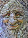 Tree Face Royalty Free Stock Photo