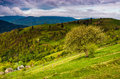 Tree and fence on rural meadow in mountains Royalty Free Stock Photo