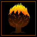 Tree on fire icon Royalty Free Stock Photo