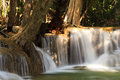 Tree flowing waterfall thailand Royalty Free Stock Photography